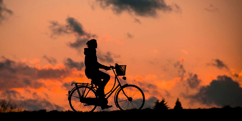 Riding Bicycle Silhouette